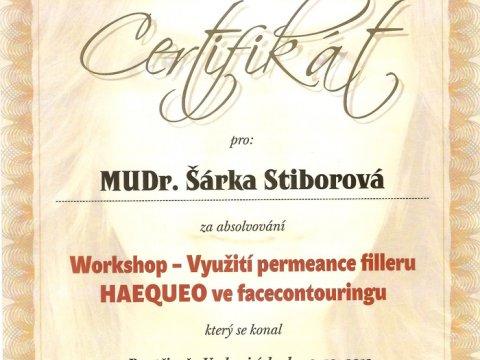 Workshop - Využití permeance filleru HAEQUEO ve facecontouringu